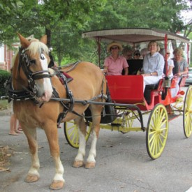 Historic Madison Carriage Tours